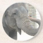 Prácticos de costa del elefante que tocan la tromp posavasos personalizados