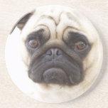 Prácticos de costa del perro del barro amasado posavasos diseño