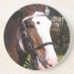 Prácticos de costa del rescate del caballo de proy posavasos personalizados