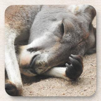 Prácticos de costa durmientes del canguro posavasos de bebida