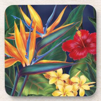 Prácticos de costa florales hawaianos del paraíso posavasos de bebida