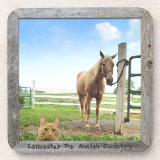 ¡Prácticos de costa, gato y caballo de Amish! Posavasos De Bebidas
