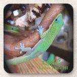 Prácticos de costa hawaianos del Gecko del polvo d Posavasos De Bebidas