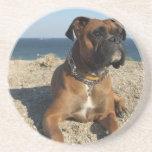 Prácticos de costa lindos del perro del boxeador posavasos diseño