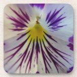 Prácticos de costa púrpuras de la flor posavasos de bebidas