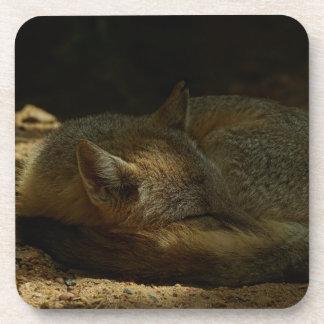 Prácticos de costa rápidos del corcho del Fox de T Posavasos De Bebidas