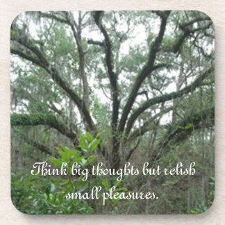 Prácticos de costa tranquilos del árbol posavasos