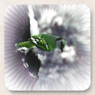 Prácticos de costa verdes del cuadrado del pájaro  posavasos