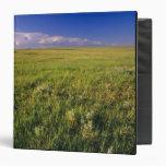 """Pradera corta de la hierba en del noreste alejado carpeta 1 1/2"""""""