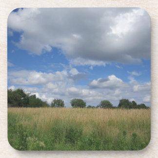 Pradera de Iowa del verano Posavaso