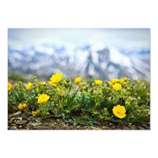 """Prado alpino en parque nacional de jaspe invitación 5"""" x 7"""""""