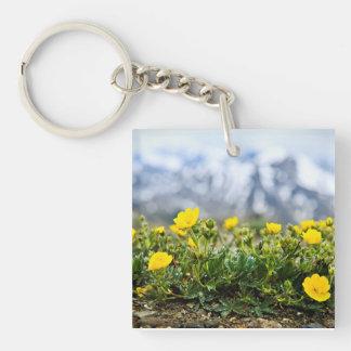 Prado alpino en parque nacional de jaspe llavero cuadrado acrílico a doble cara