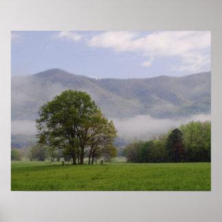 Prado brumoso y montaña rica, ensenada de Cades, Impresiones