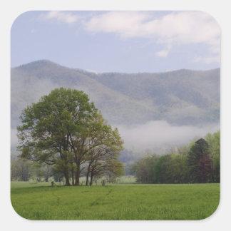 Prado brumoso y montaña rica, ensenada de Cades, Pegatina Cuadrada