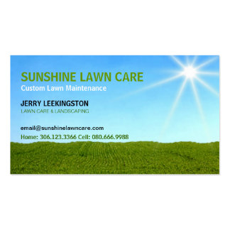 Prado, cielo azul y cuidado del césped de la sol tarjetas de visita