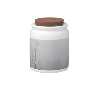Prado cubierto de rocio del árbol jarras para caramelos