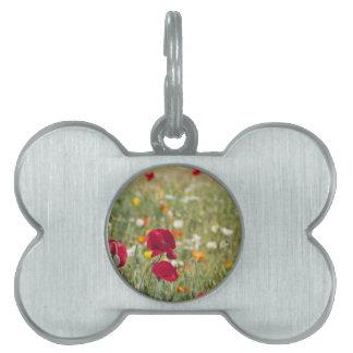 Prado de la flor placa mascota