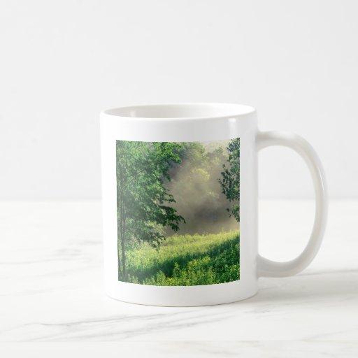 Prado de la mañana del árbol taza