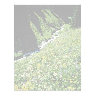 Prado de la montaña con la cala, Columbia Británic Plantilla De Membrete