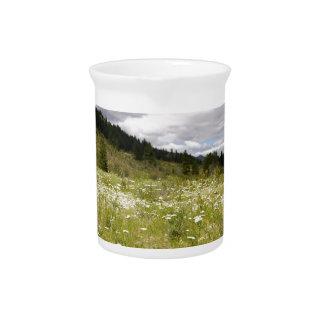 Prado de la montaña jarra para bebida