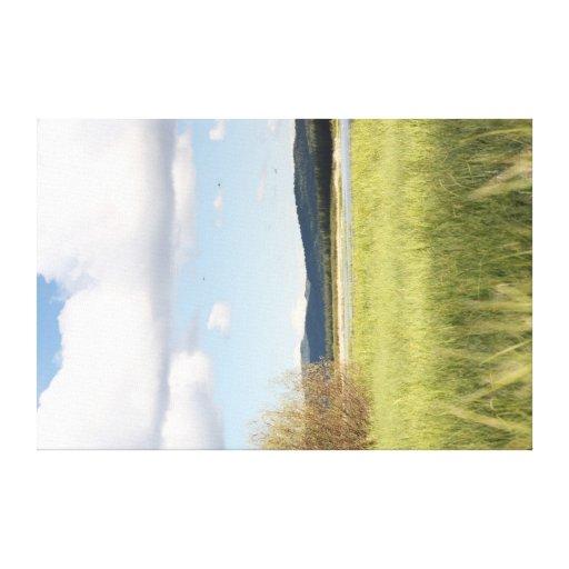 Prado de la primavera impresión en lienzo estirada