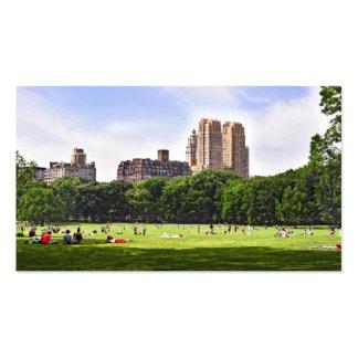Prado de las ovejas de Central Park Tarjetas De Visita