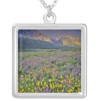 Prado de wildflowers en los muchos glaciar colgante cuadrado