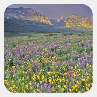 Prado de wildflowers en los muchos glaciar calcomania cuadradas personalizadas