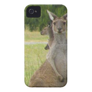 Prado del canguro carcasa para iPhone 4 de Case-Mate
