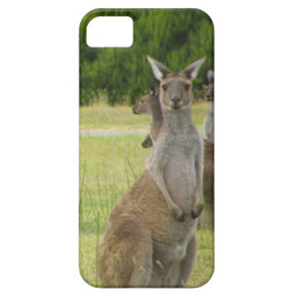 Prado del canguro funda para iPhone SE/5/5s