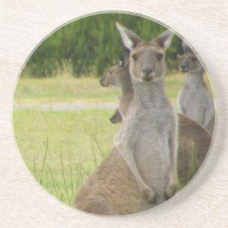 Prado del canguro posavasos manualidades