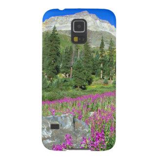 Prado del fireweed y de Mt. Sneffels en el Mt. Carcasas Para Galaxy S5
