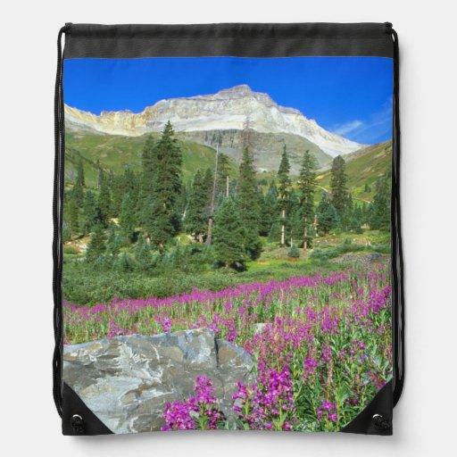 Prado del fireweed y de Mt. Sneffels en el Mt. Mochila