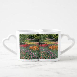 Prado del tulipán taza amorosa