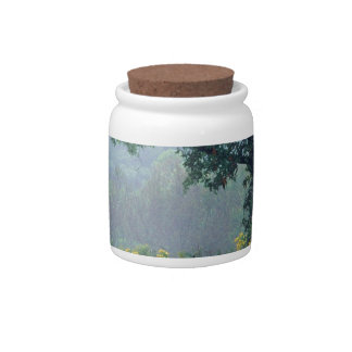 Prado del verano de los árboles jarras para caramelos
