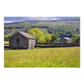 Prado del verano, - los valles de Yorkshire Fotografías