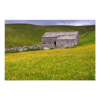 Prado del verano, los valles de Yorkshire Fotografía