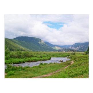 Prado en Parque Nacional de las Montañas Rocosas Tarjeta Postal