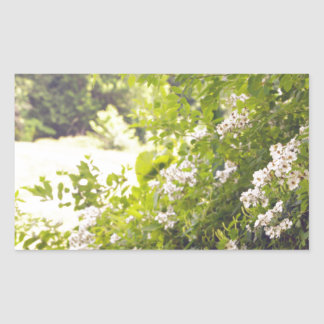 Prado florido pegatina rectangular