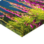 Prado hermoso del foxglove impresiones en lienzo estiradas