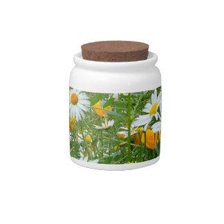 Prado hermoso del Wildflower y de la mariposa Plato Para Caramelo