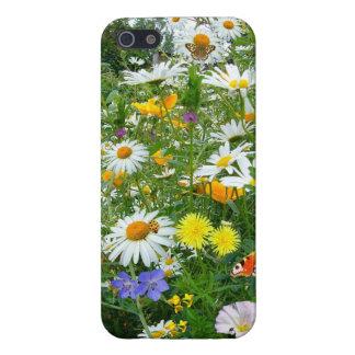 Prado hermoso del Wildflower y de la mariposa iPhone 5 Fundas