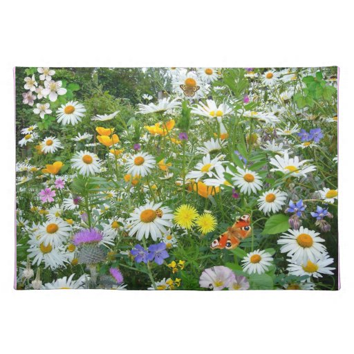 Prado hermoso del Wildflower y de la mariposa Mantel