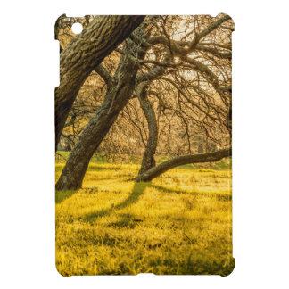 Prado Park, Montevideo, Uruguay iPad Mini Cover