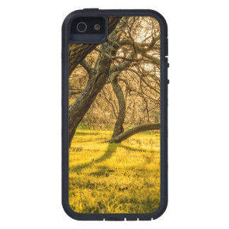 Prado Park, Montevideo, Uruguay iPhone SE/5/5s Case