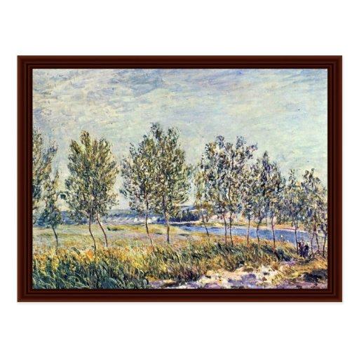 Prado por Sisley Alfred Tarjetas Postales