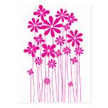 Prado rosado de la flor postal