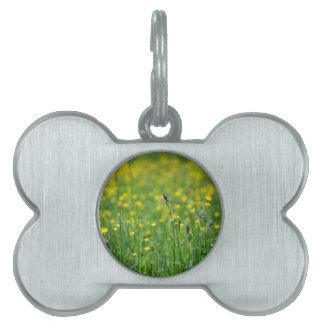 prado verde placa de nombre de mascota