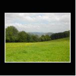 Prado verde. Paisaje del campo Escultura Fotografica