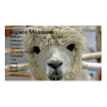 Prados adorables de la alpaca tarjetas de visita